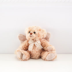 Z_02: Rafael Angel  Teddy   gift wrapped