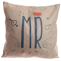 Z_106: Pillow Mr.