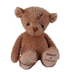 Z_38: Teddy Nobody is perfect  gift wrapped