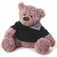 Z_44: Teddy Bear Sylvester  gift wrapped