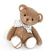 Z_45: Big Teddy gift wrapped