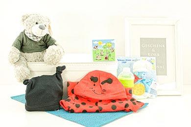 Baby Gifts Europe TEDDY GIFT BASKET FOR THE LIL BEETLE