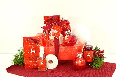 SPA CHRISTMAS GIFT BASKET to Europe